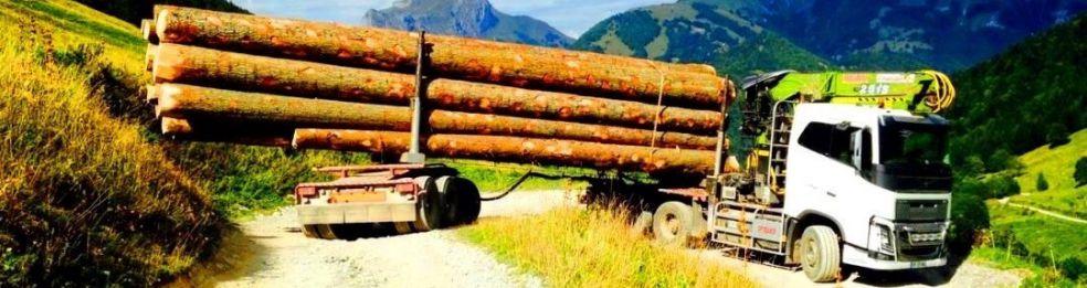 bois foret transport bois scierie billon grumiers grumier grumes  ~ Transport Grumes Bois